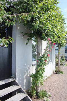 Durgerdam & Holysloot | ENJOY! The Good Life | http://www.enjoythegoodlife.nl/durgerdam-holysloot/