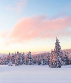 Winter wonderland in Crater Lake National Park #Oregon  Photo: @christianannschaffer #wildernessculture by wilderness_culture