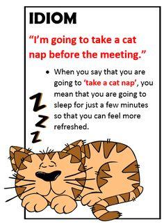 Idiom: cat nap