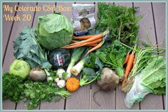 Using the CSA Foods . .  .