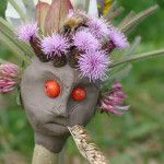 Clay puppets on sticks at #forestschool