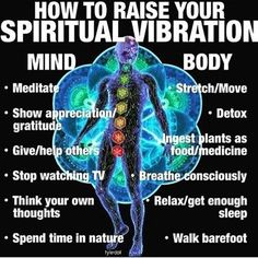 Raise your vibration. ♡ Bird Watcher Reveals Controversial Missing Link You NEED To Know To Manifest The Life You've Always Dreamed Of. Mind Body Spirit, Mind Body Soul, Spirit Soul, Spiritual Growth, Spiritual Quotes, Metaphysical Quotes, Spiritual Movies, Enlightenment Quotes, Spiritual Manifestation