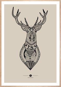Inca Deer