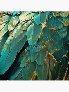 Teal Color Schemes, Teal Colors, Turquoise Color, Gold Throw Pillows, Feather Pillows, Sofa Pillows, Gold Aesthetic, Summer Aesthetic, Aesthetic Rooms