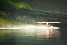 50 Wonderful Pictures of National Geographic Photo Contest 2012 @ GenCept (42)