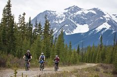 2017 Great Divide Colorado Alpine II | Guided Tours | Adventure Cycling…