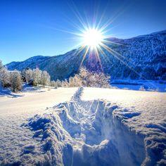 2732x2732 Wallpaper nature, forest, dawn, winter, mountains