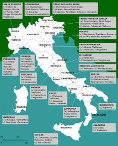 I find this map very helpful. Good Vines' vineyard is located in Veneto, in the North Eastern region