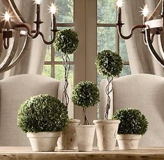 I have some Topiaries in terracotta pots that I'm not crazy about, so I'm thinkin some paint and little glaze to accomplish this look