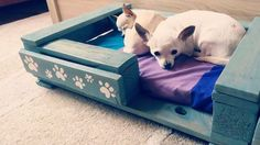 Nice dog bed made from pallet wood