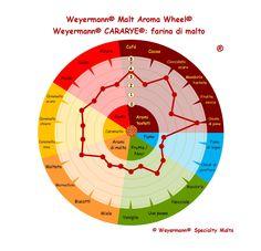 Weyermann® Malt Aroma Wheel® Cararye® - farina di malto