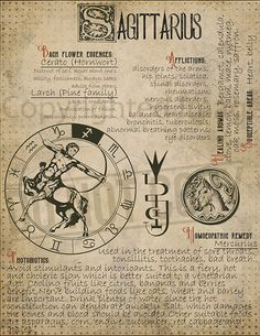7 pages set about SAGITTARIUS Astrological Sign Correspondences. They are an ideal addition to your own Wicca Book of Shadows. Zodiac Art, Astrology Zodiac, Zodiac Signs, Astrological Sign, Sagittarius Zodiac, Wiccan Spells, Witchcraft, Pagan, Magic Herbs