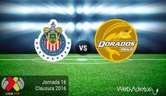 Chivas vs Dorados, J16 del Clausura 2016 ¡En vivo por internet! - https://webadictos.com/2016/05/01/chivas-vs-dorados-j16-clausura-2016/?utm_source=PN&utm_medium=Pinterest&utm_campaign=PN%2Bposts