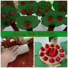 Toilet roll tubes or kitchen roll tubes cut into 2 halves Green construction cut out as leaves Brown Paint or Mix Red and Green Red Paint Cotton Balls Foil pan