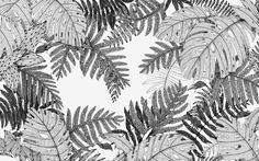 In the Forest Floor - Suthipa Kamyam