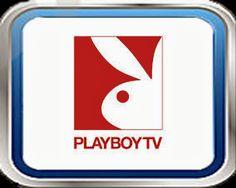 VER CANAL VENUS ONLINE EN VIVO Y ONLINE GRATIS | VerCanalesTV.com Playboy Tv, Free Tv Streaming, Venus Online, Video Downloader App, France 24, Espn, Android Apps, Internet, Humor