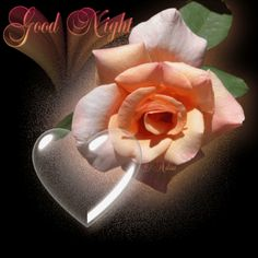 Sweet dreams lovely friends - ♥✴KevinKillerKeller✴♥ - FriendLife