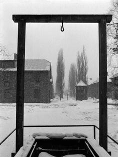 70 ans de la libération des camps : Auschwitz vu par Raymond Depardon 11