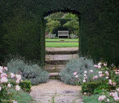 Wonderful hedge by Penelope Hobhouse, the famous garden designer