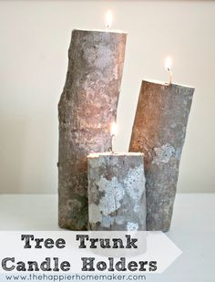Easy to make candle holders from a tree truck-would be a great wedding centerpiece!