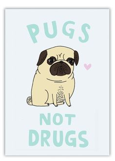 Pugs Not Drugs - agreed.
