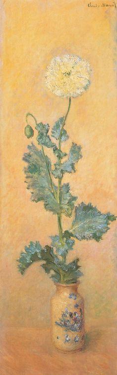Pavot blanc (C Monet - W 920),1884.
