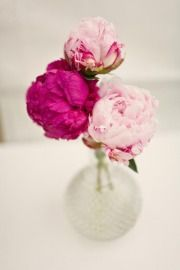Pretty Pink Peonies in a round perfume bottle