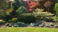 Realizace zahrady - Kopřivnice Zen, Plants, Lawn And Garden, Plant, Planets