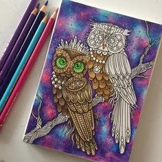 New wip from Hanna Karlzons postcard-book Vinternatt.  #hannakarlzon #vinternatt #fabercastell #fabercastellpolychromos #polychromos #colouring #coloring #adultcoloring #adultcoloringbook #colouringbook #owls