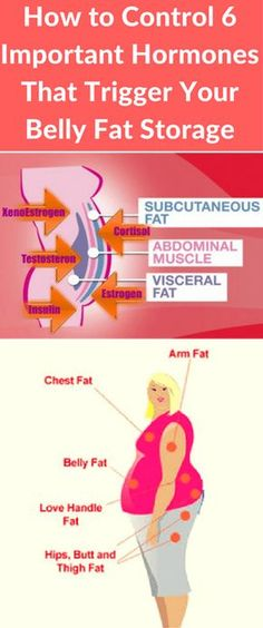 How to Control 6 Important Hormones That Trigger Your Belly Fat Storage - Workout Hit