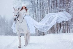 Winter Wonderland | Holiday Snow at: http://www.pinterest.com/oddsouldesigns/once-upon-a-december/ #horse #queen