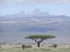 The landscape at Lewa Wildlife Conservancy, with Mt Kenya in the background.