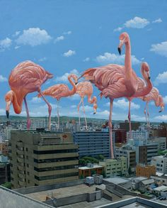 from Searching for Paradise series by Shuichi Nakano (via Fubiz)