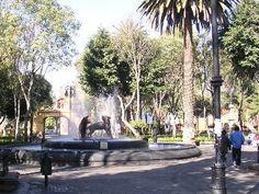 Coyoacán es uno de los barrios de mayor tradición y antigüedad en la Ciudad de México. Hoy en día es el epicentro de la vida cultural del sur de la capital y es punto de recreo para las familias que visitan sus plazas los fines de semana para pasear y presenciar los espectáculos callejeros. Coyoacán cuenta con numerosos museos y recorridos en turibus.