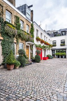 Beautiful houses on Wilton Row in Belgravia, London. This is one of the best places in London to walk around. London Tours, London Travel, Best Places In London, Beautiful Homes, Beautiful Places, Beautiful London, Highgate Cemetery, Walks In London, London Free