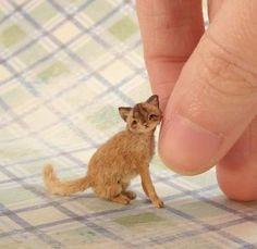 1:12 Dollhouse Miniature Cat by CDHM Artisan Aleah Klay of Aleah Klay Studio, www.cdhm.org/user/aleahklay_animals.