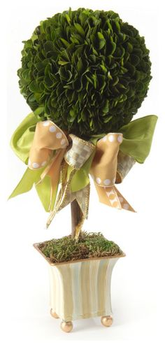 Topiary with Bow
