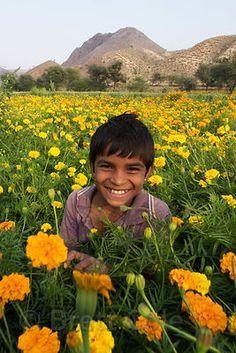 Brett Cole Photography | India Farm Photo Gallery