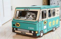 「荷物をお届けにあがりましたー(猫)荷物をお届けにあがりましたー(猫)」のフリー写真素材