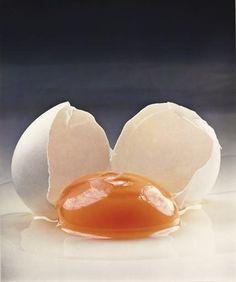 The master of still-life Irving Penn Broken egg, 1959