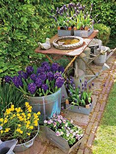 Picking a palette can help you figure out where to start in your landscaping: http://www.bhg.com/gardening/design/styles/rustic-garden/?socsrc=bhgpin072414pickapalette&page=5