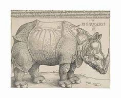 Albrecht Dürer  The Rhinoceros  Woodcut with letterpress text, 1515,  S. 9¼ x 11¾ in. (235 x 298 mm.)