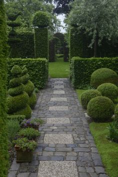 green & walled . clipped