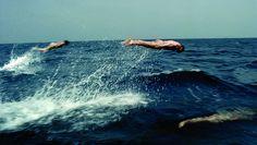 Johnnie Walker 'Fish' | Framestore - cardume