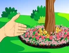 flower bed under a tree with their hands
