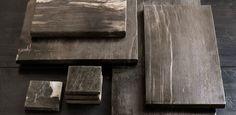 Petrified Wood Collection - Dark Wood | RH Modern
