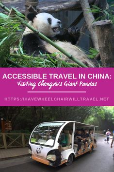 We are a family sharing our travels, tips and experiences here at Have Wheelchair Will Travel. While we have a focus on travel we know that travel is a 'sometimes' activity for most of us, so we share our day-to-day tips and other fun in between. Bus Ride, Travel Reviews, Chengdu, Special Needs Kids, China Travel, Trip Planning, Family Travel, Travel Guide, Giant Pandas