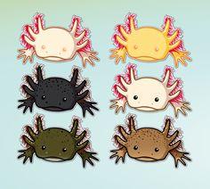 Axolotls on Pinterest | 35 Pins
