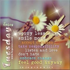 Have A Positive Tuesday Tuesday Tuesday Quotes Happy Tuesday Tuesday Quote Happy  Tuesday Quotes