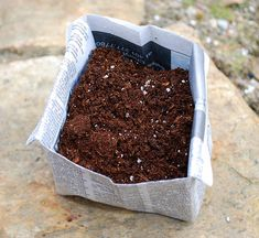 newspaper seedling pot